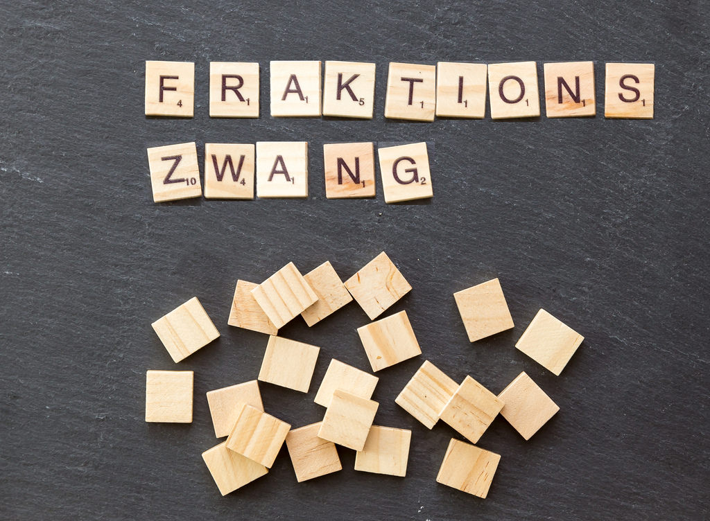 fraktionszwang photo