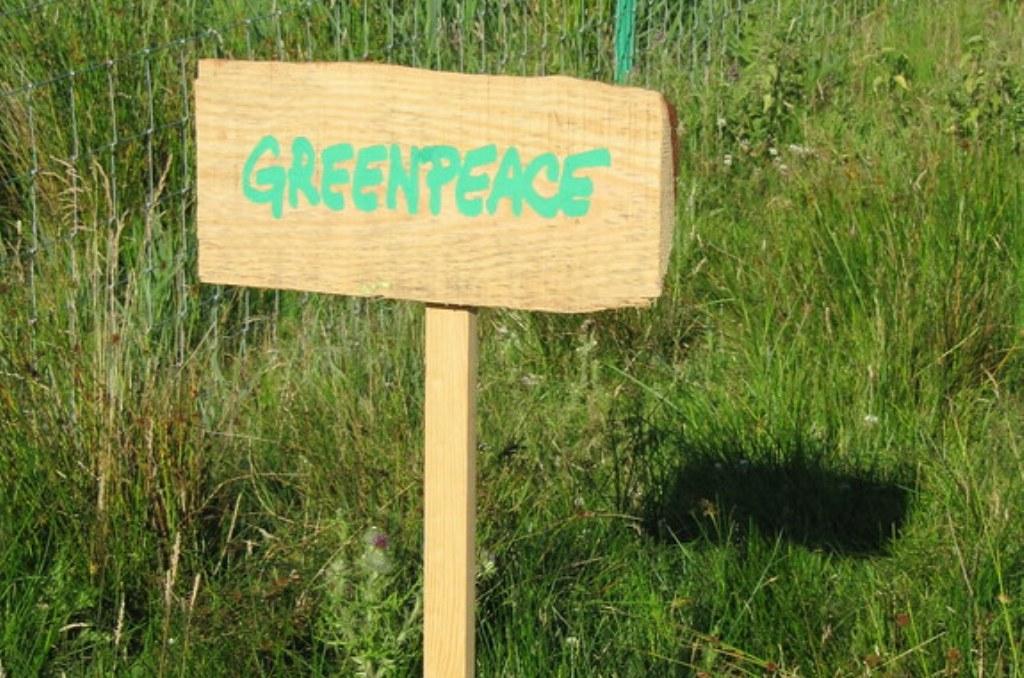 greenpeace photo